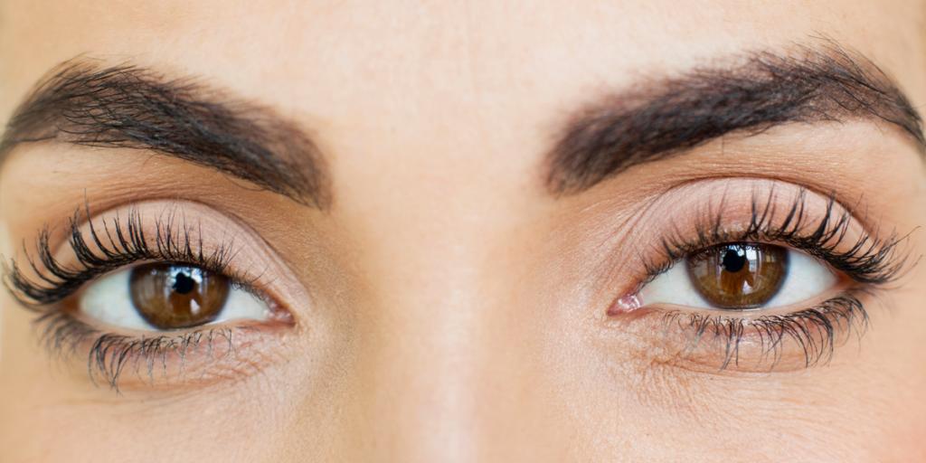 best eye lash serum
