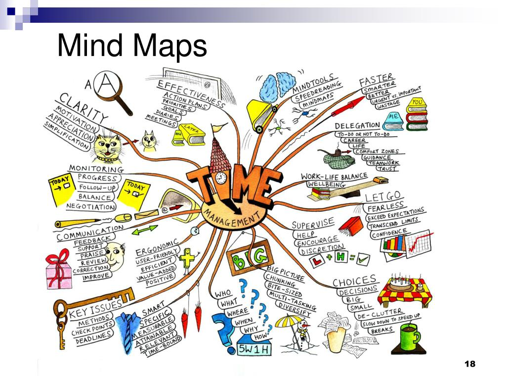 Everything You Need to Know about Mind Mapping Software
